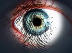 eye-300x225